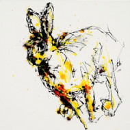 Kathryn Callaghan - 'Bursting' Irish Hare